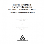 Implementing Safety Incentives